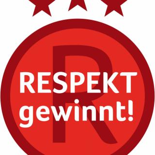 Respekt gewinnt!: Die Preiträgerteams 2012