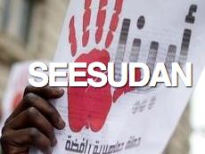 seesudan – Informationen zur politischen Situation im Sudan – Blog